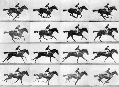Image Source: Eadweard Muybridge 1830-1904, Photographer, Sequence of a race horse galloping