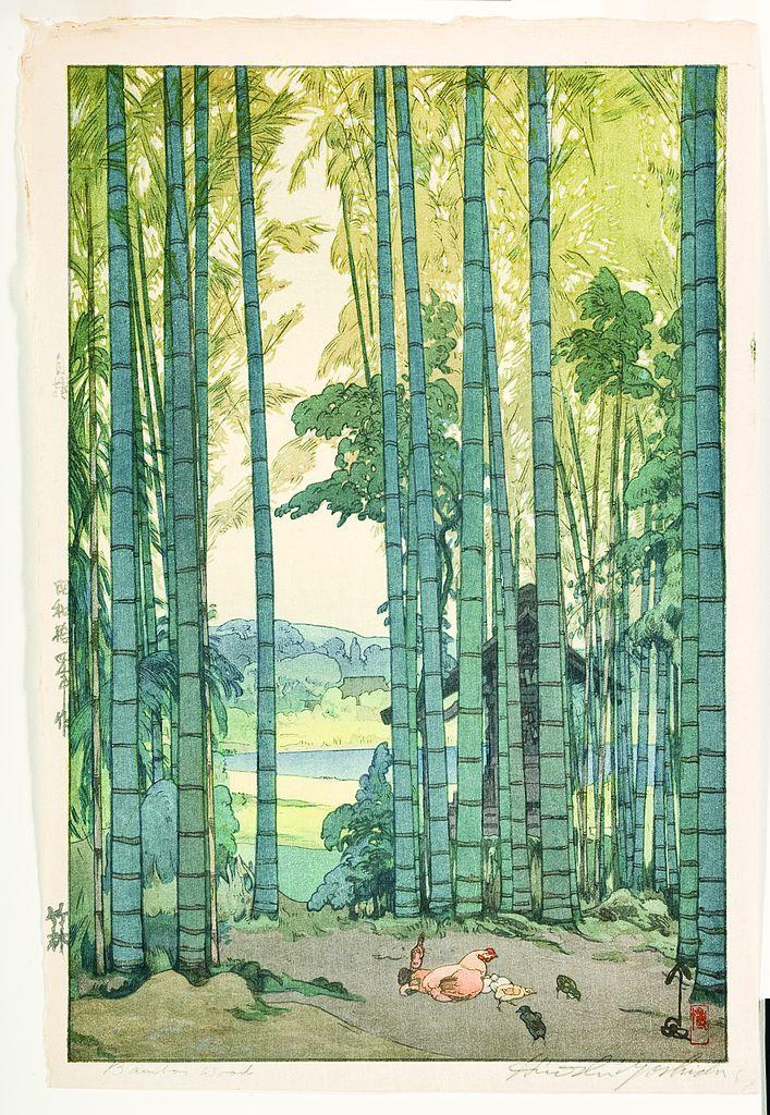 Bamboo_Grove_(5759026915)