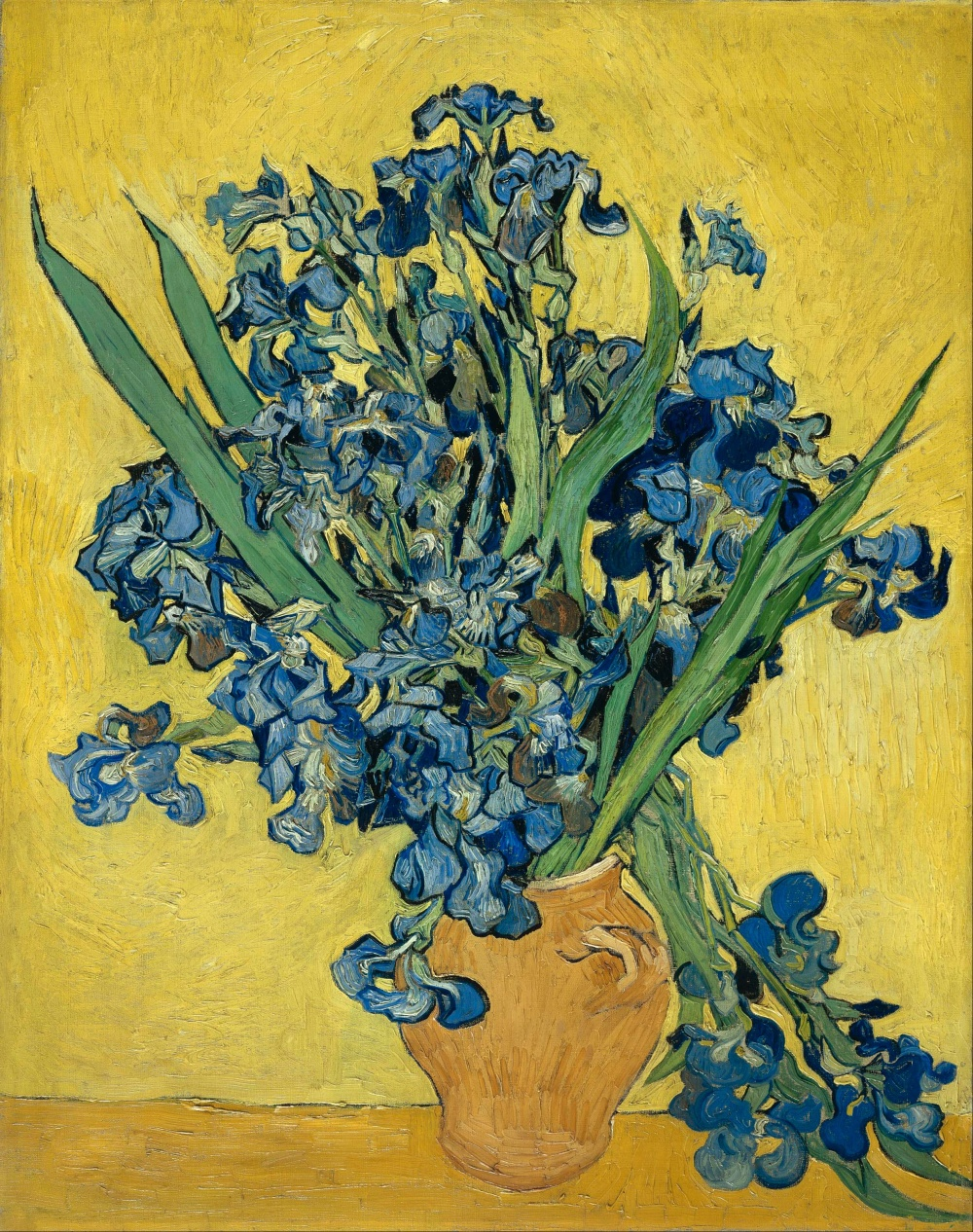 Vincent_van_Gogh_-_Irises_-_Google_Art_Project